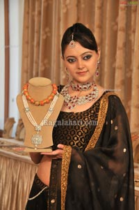 Art Karat's The Maharaja Collection Exhibition at Hyderabad