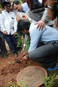 Ram Charan Tej Launches Apollo Go Green Initiative &  Herbal Garden