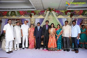 Phanibabu-Snigdha Wedding Reception Photos