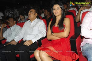 Body Guard Audio Release