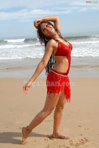 Paakhi Hegde Photo Gallery