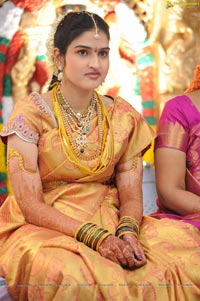 Kaikala Satynarayana Brother's Daughter Wedding Function