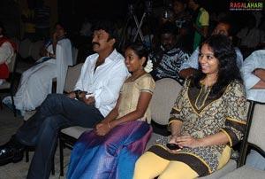 Maa Annayya Bangaram Platinum Disc Function