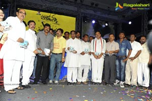 Photos of Hormones Audio Release