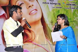Prema Nilayam Audio Release Function Photos