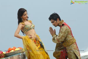 Anaganaga O Dheerudu Shruti Haasan Siddharth Romantic Photos