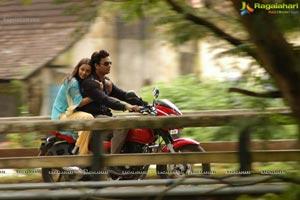 Madhavan, Bhavana Prema Nilayam Movie Gallery
