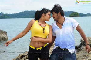 Tashu Kaushik Hot Song from Telugabbayi