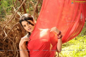 Taneesh, Tashu Kaushik's Telugabbayi Movie Gallery