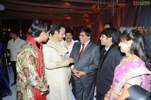 Ambica Krishna Son Hanuma-Lavanya Wedding Reception