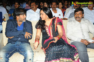 Allu Arjun's Julayi Audio Release Photo Coverage