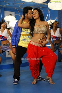 Em Babu Laddu Kavala High Resolution Movie Gallery