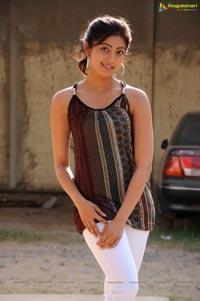 Shakuni Movie Stills - Cast: Karthik Sivakumar, Pranitha