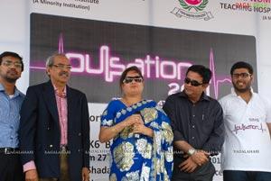 Pulsation 2011