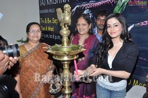 D'Sire Exhibition N Sale at Taj Krishna