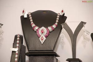 Aaina Exhibition at Taj Krishna