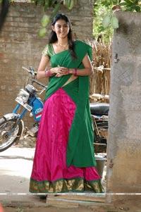 Allari Naresh, Kamna Jetmalani, Meghana
